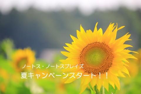 【7月31日まで】夏のスタート応援キャンペーンスタートです!